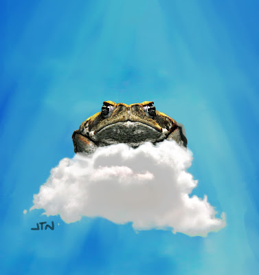the death of a toad poem