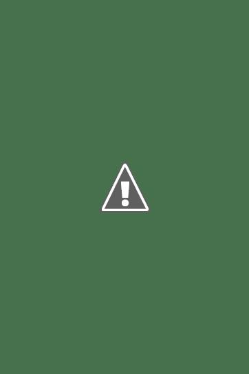 Ярославцева Александра