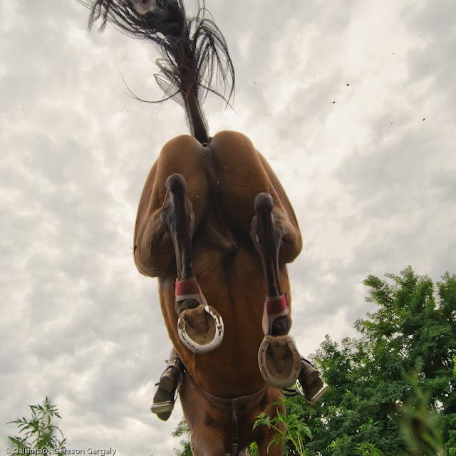 Lófasz, ahogy az sosem láttátok