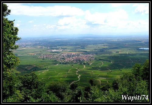 Virée en Alsacie et Vosgie Wap_2497