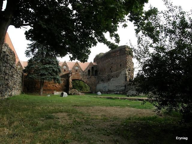 ruiny zamku wToruniu