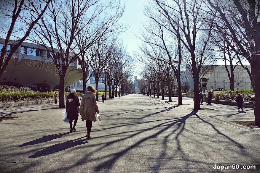 City-Hotel-Lonestar-Shinjuku-sakura-tokyo-japan-เที่ยวญี่ปุ่น-ที่พัก ซากุระ โตเกียว-แนะนำ ที่ัพัก ซากุระ-เที่ยวญี่ปุ่นด้วยตัวเอง