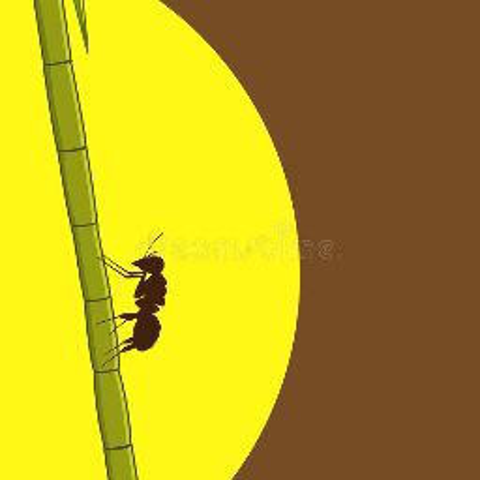 Suyash Verma