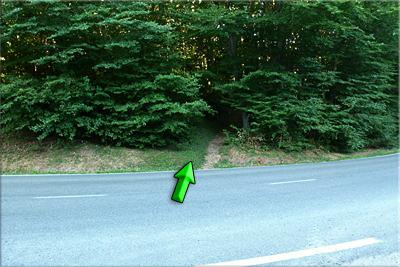 Sendero al otro lado de la carretera