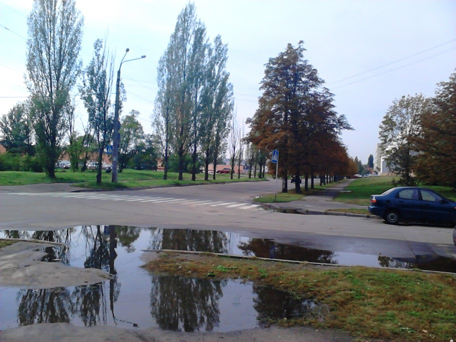 Улица сфотографирована на Sony Xperia Tipo Dual