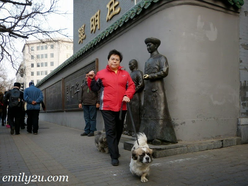 Beijing Chinese dogs