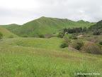 Views along Nortonville Trail