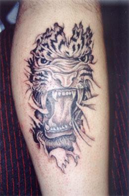 tatuaże koty dzikie i inne