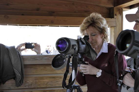 Creada la primera red de Birdwatching, rutas para el avistamiento de aves