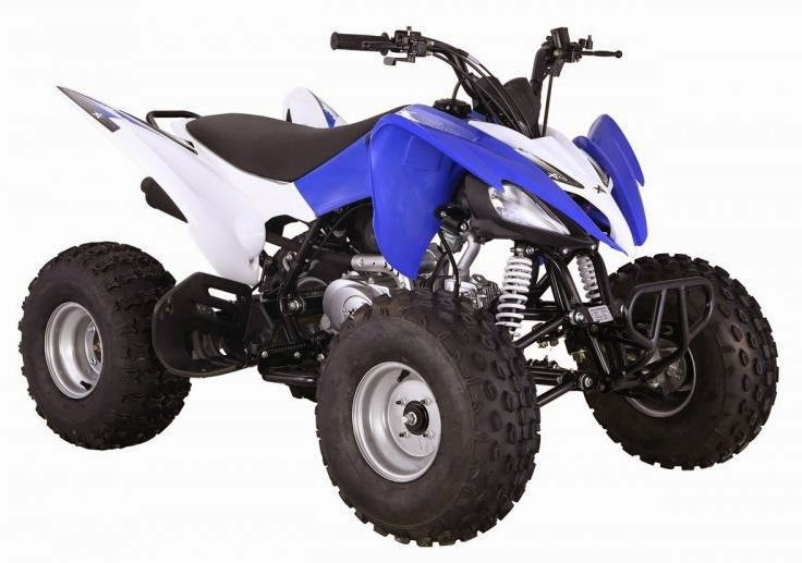 125cc Raptor Style Series 2 Feral Sports Quad Bike - Blue