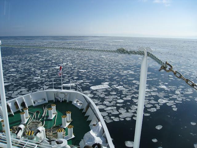 流冰量越來越少,以往壯觀的流冰群已經非常難見。