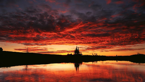Sky Reflection on a Lake, Northwest Territories.jpg
