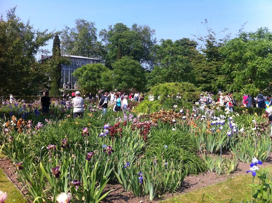 rouen jardin des plantes