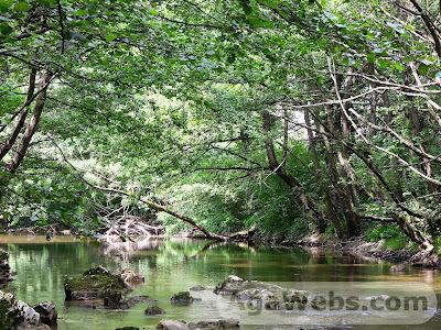 Semenic - Cheile Carasului: River Caras