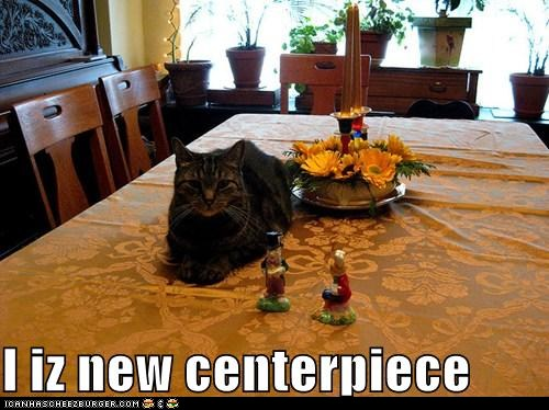 photo of cat laying in the center of a Thanksgiving table