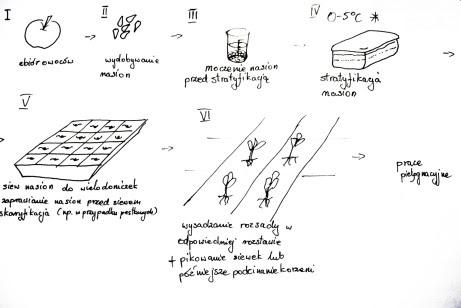 Uproszczony schemat produkcji podkładek generatywnych