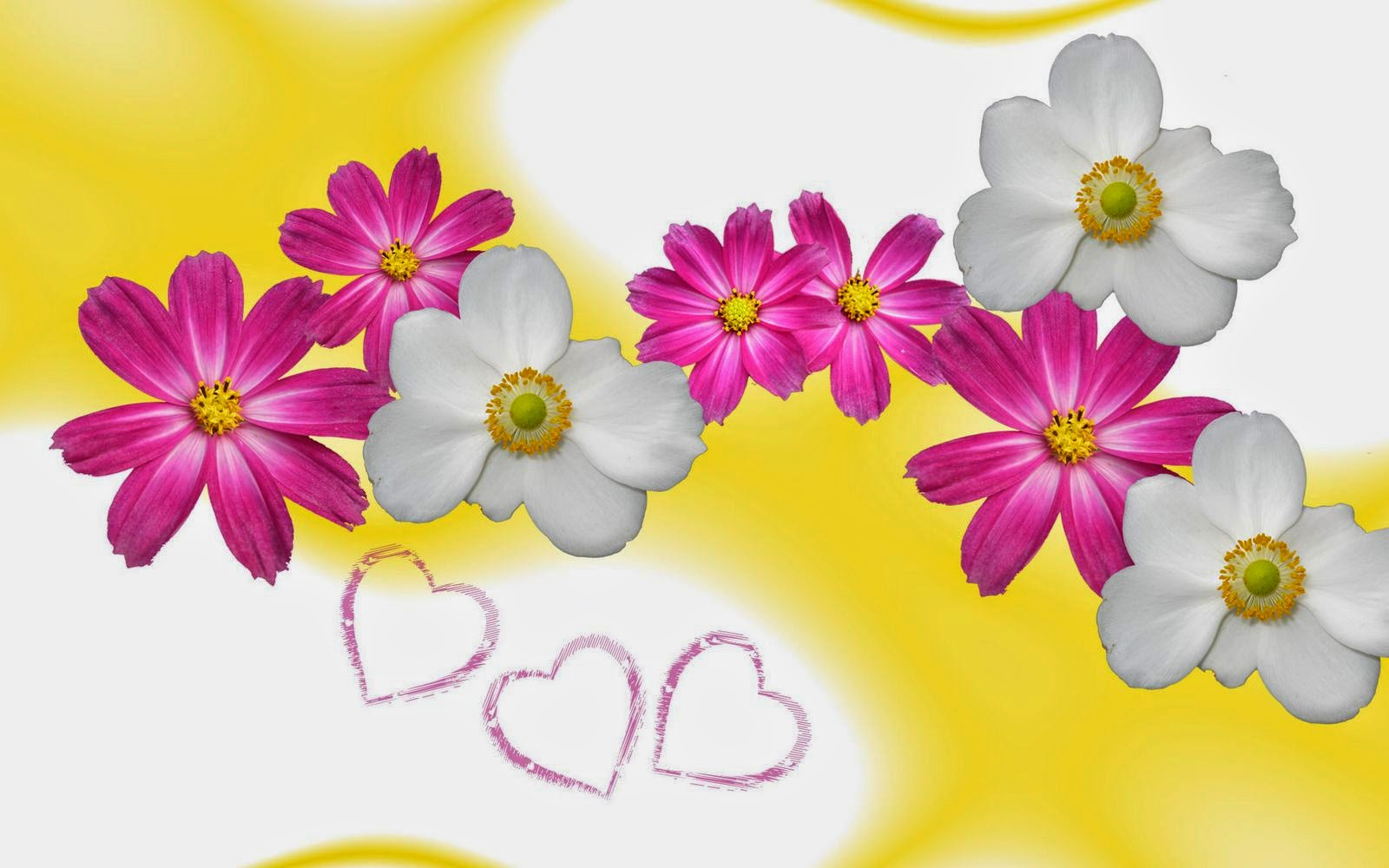 flower-wallpaper-yellow-in-love