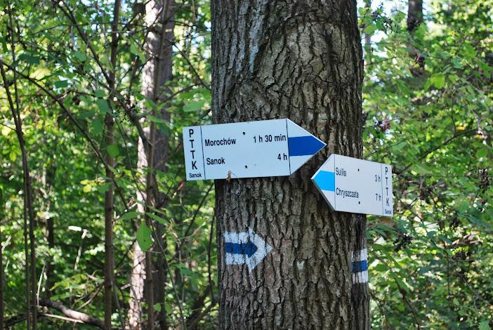 Szlak niebieski Sanok-Chryszczata