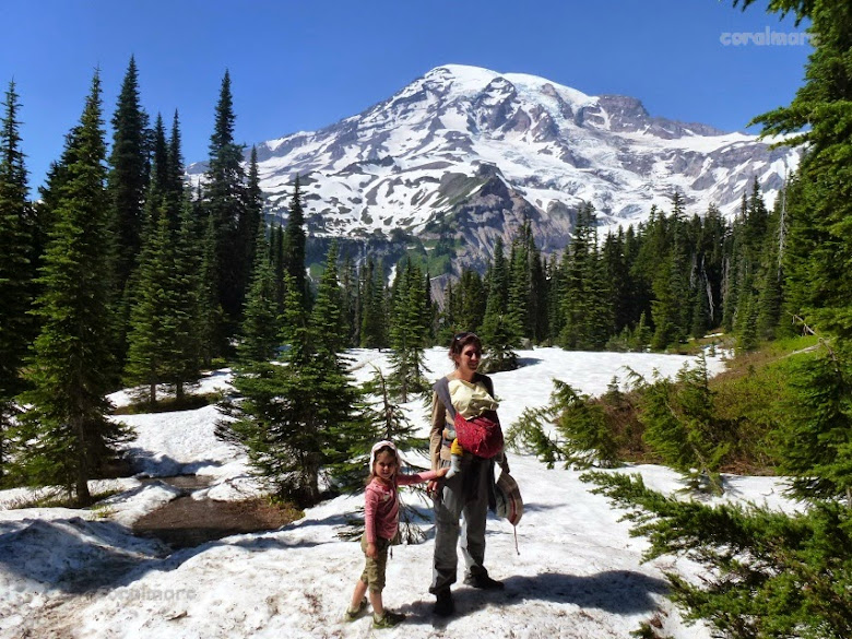 Mount Rainier NP: Nisqually Vista Trail