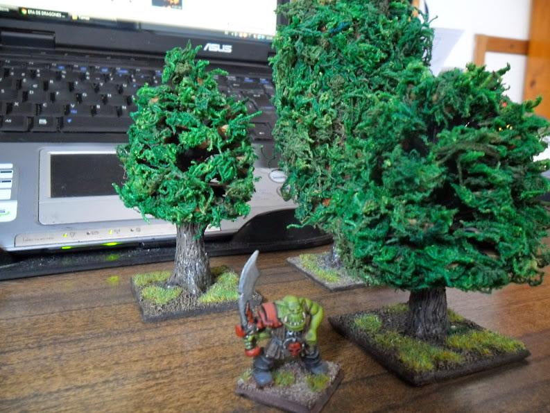 El nacimiento de un bosque - Página 2 Arbol%2B6%2BSAM_0851