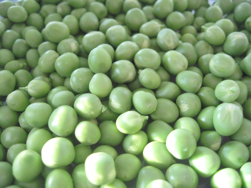 Peas from a farmer's market in New Jersey