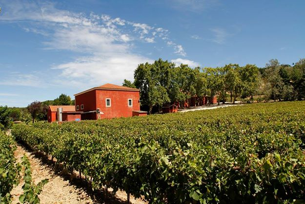 Main image of Quinta Vale de Fornos
