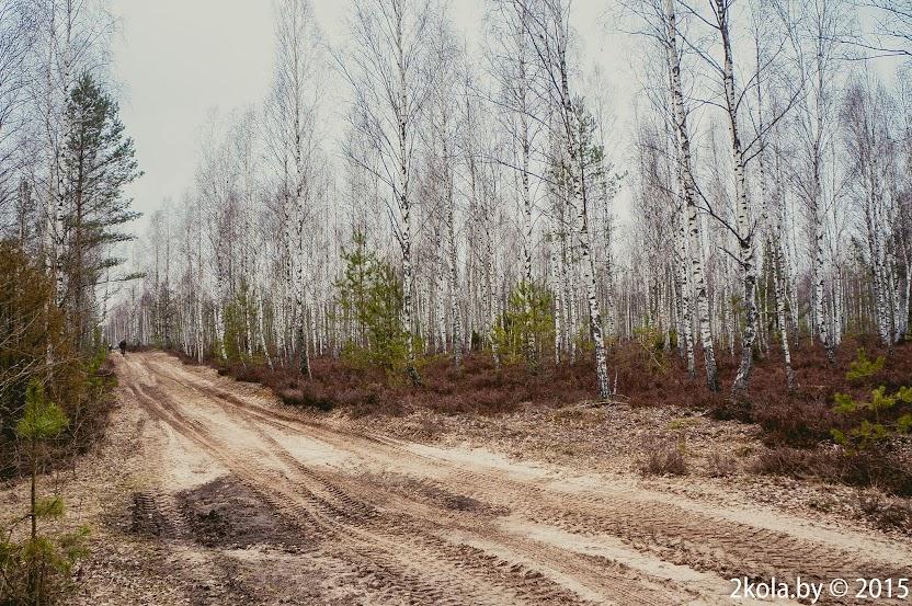 DSC03822 - Покатушка: Барановичи-Слоним