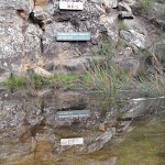 Campfire Creek sign (145128)