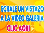 Video Galeria de la feria nacional de primavera