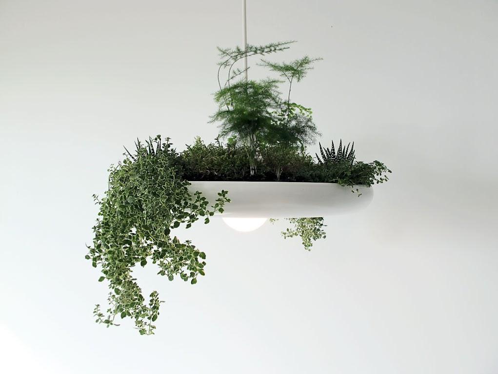 *空中花園盆栽燈具 Babylon Light:在室內享有綠色叢林包護的氛圍! 1