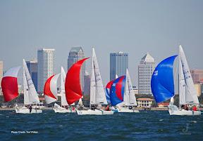 J/24s sailing Midwinters off Tampa, FL