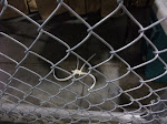disposable handcuffs on the other side of the fence....I pictured the other side as one giant WWF cage match