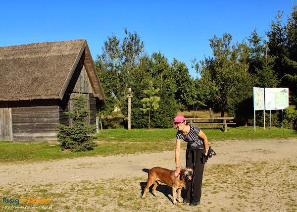 Na trasie Nordic Walking w Hejtusie - psiak ucieszył się z naszego powrotu