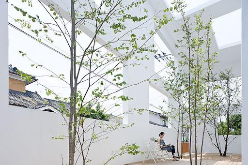 1770356362_house-n-fujimoto-4762.jpg (900×599)