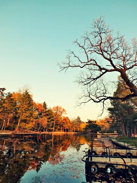 lac parc crang buzau