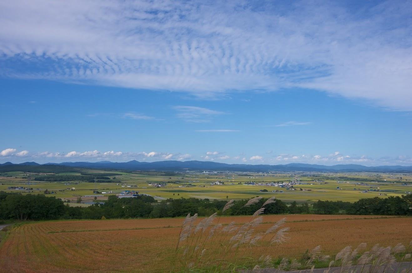 眺望の丘より