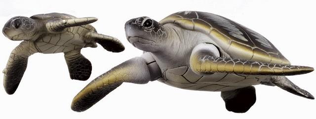 Mô hình Hai mẹ con nhà Rùa xanh Ania AS-20 Green Turtle thật thú vị