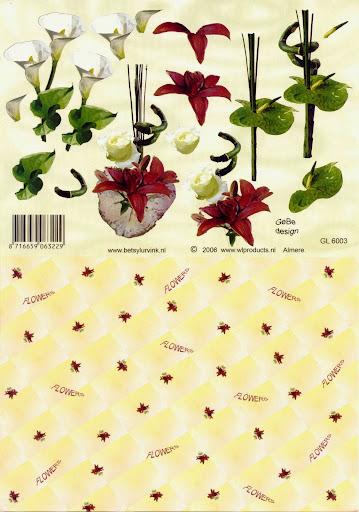 GL 6003 Betsy Lurvink-bloemen+achtergrond.jpg