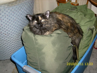 Fluffy on Duffel bag
