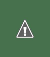 Puppy Treat Jars, Ceramic Treat Jars For Dog Biscuits