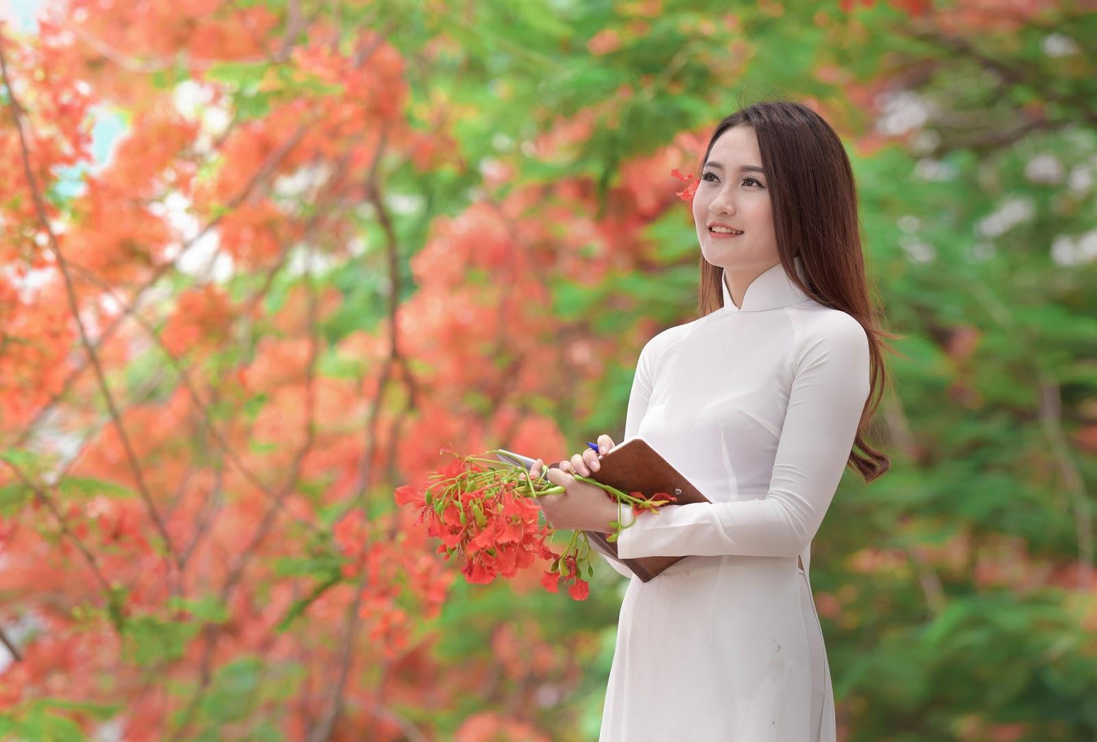 nữ sinh áo dài và hoa phượng ngày cuối Hạ