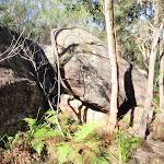Boulders near the start of split rock trail (239252)