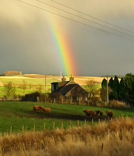 Rainbow cottage. Scottish artist Aileen Clarke