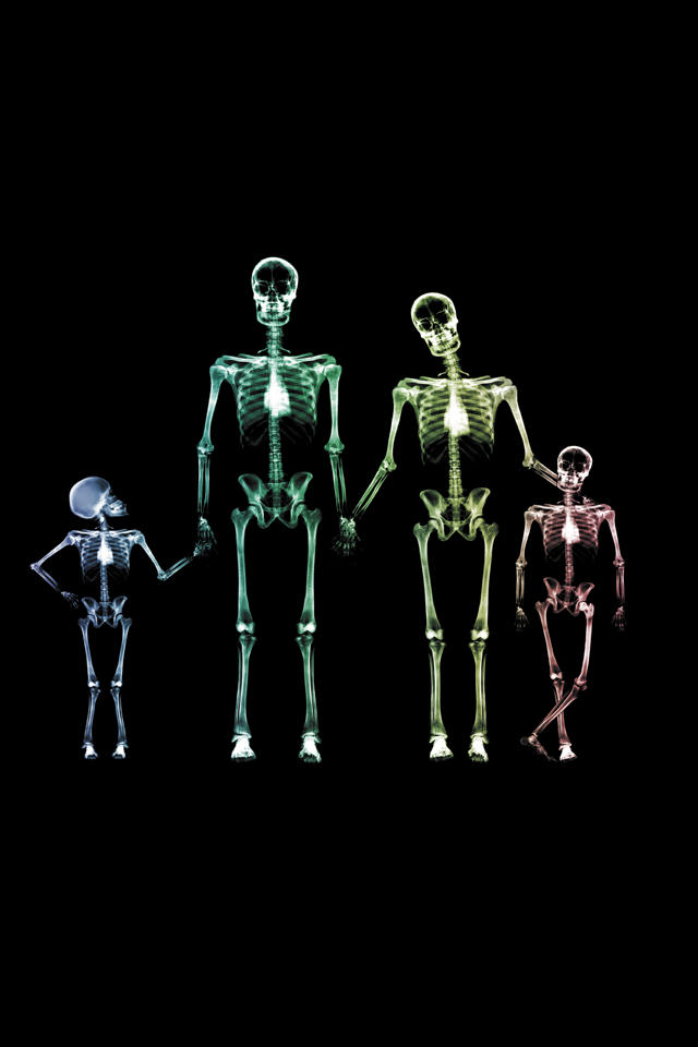 iPhone4 Wallpapers X-Ray Families