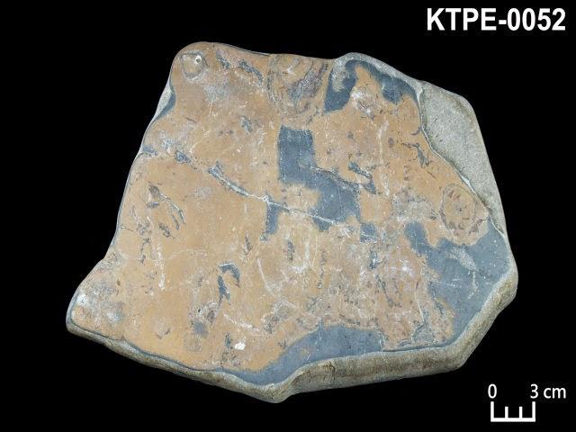KTPE-0052 虎眼石
