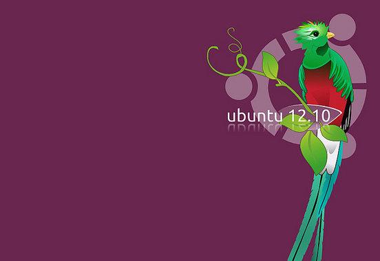 Ubuntu 12.10