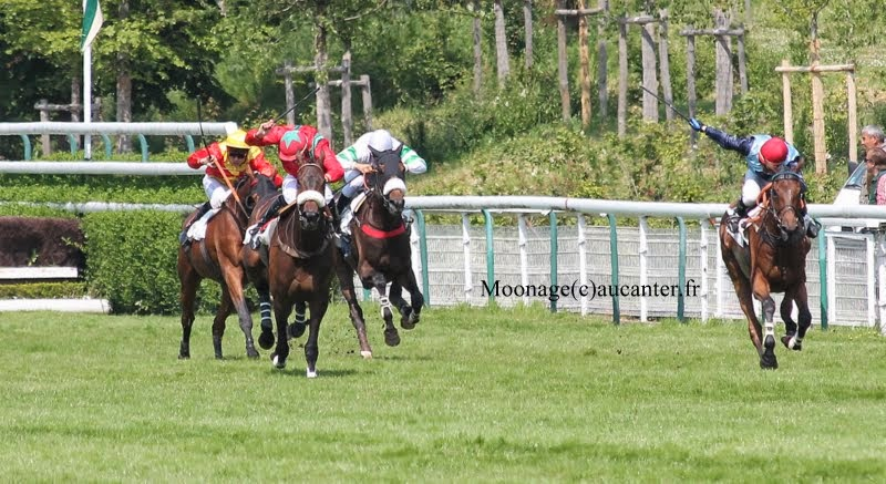 Photos Auteuil 8-06-2014  IMG_1804