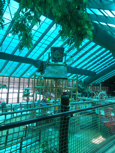 Water Park «Wild Bear Falls Water Park», reviews and photos, 915 Westgate Resorts Rd, Gatlinburg, TN 37738, USA