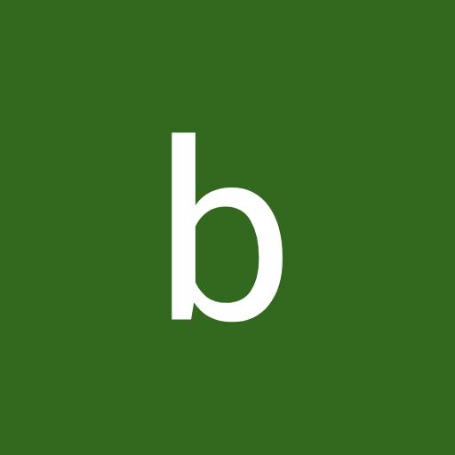 bhupendra sinh