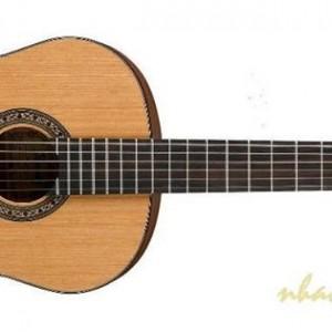 [Hình: guitar-classical-300x300.jpg]